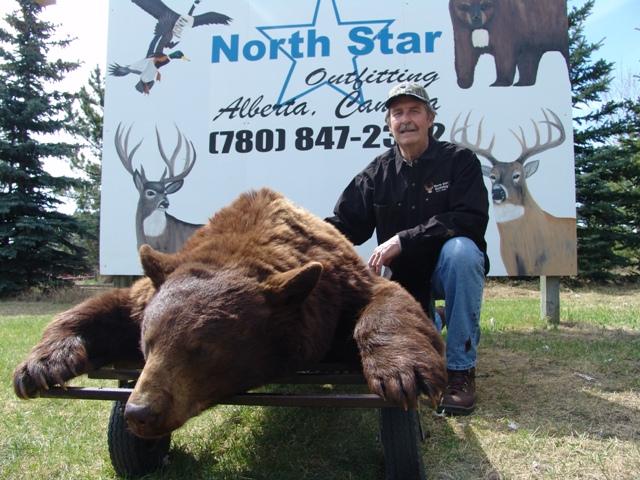 hunting black bears in Canada