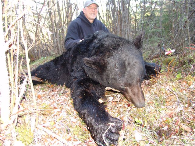 Alberta Canada Black Bear Hunts