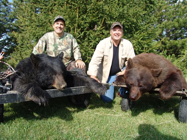 Alberta Canada Bear Hunting with North Star Outfitting