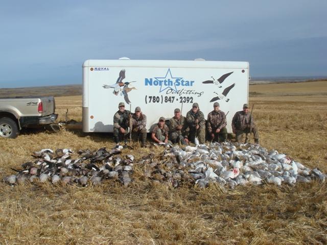 goose hunting duck hunting alberta canada