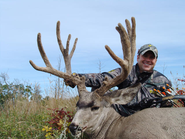 Mule Deer Bow Hunts Alberta