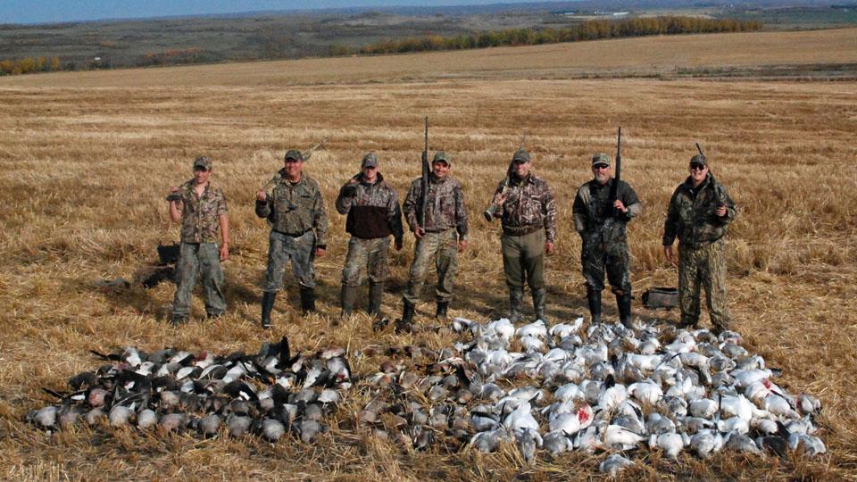 Duck & Goose Hunting Alberta Canada